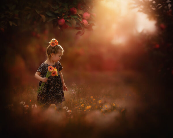 Canon EOS R6 fine art portrait of a young little girl in an apple orchard picking flowers by dutch natural light photographer Willie Kers