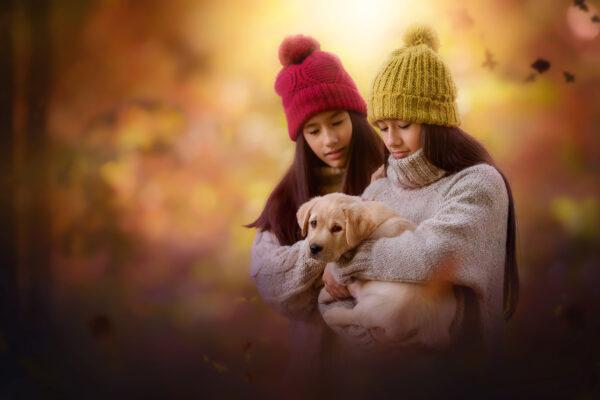 Portret van 2 meisjes en een puppy in een herfstbos gemaakt door fotograaf Willie Kers tijdens de workshop de magie van het natuurlijk licht in België